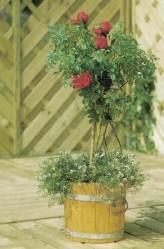 Blumenkasten Eiche & Buche rund